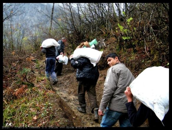 1205 Trasporto di sacchi di farina alle persone rimaste isolate durante l'inverno a causa della neve, Albania