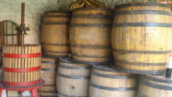 Velika Hoca, botti di vino in attesa della vendemmia, Kosovo