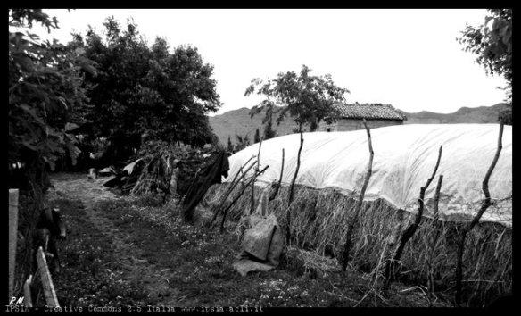Stralci di vita rurale a Scutari, Albania